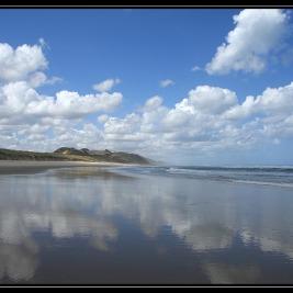 Cesta na sever – Nový Zéland