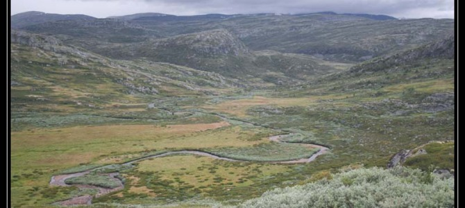 Trajekty a trek Hardangervida – Norsko