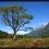 Hollyford trek – Nový Zéland