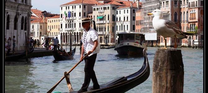 Itálie – Benátky 2013 – fotografie