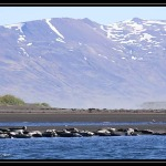 ICELAND 0435