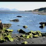ICELAND 0540