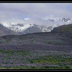 ICELAND 1853