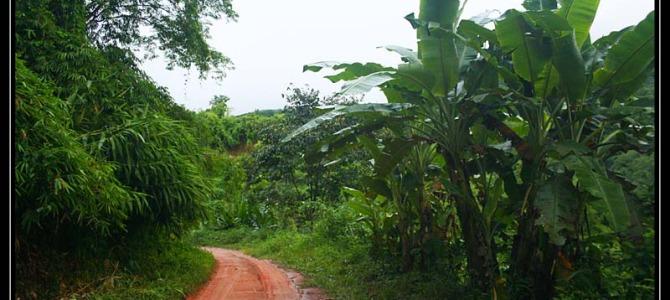 Přesun do Chiang Rai – Thajsko