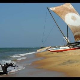 NEgombo II. – Srí Lanka