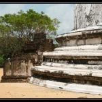Sri Lanka 0261