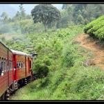 Sri Lanka 1090