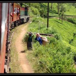 Sri Lanka 1136