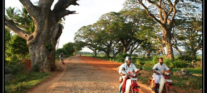 Haputale – Tissa – Yalla – Srí Lanka