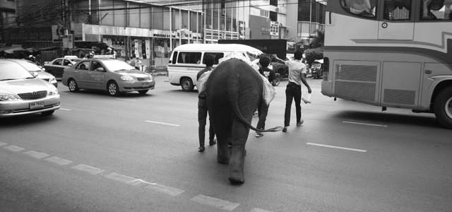 Thajsko – Bangkok den III.