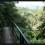 Maolin