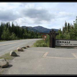 V Denali řešíme výlet autobusem a kemp – cestopis Aljaška den IX.